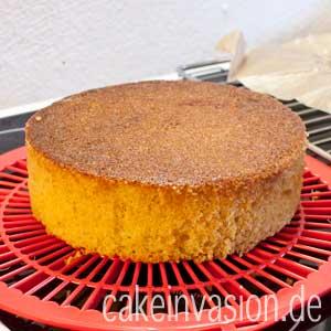 Mit Tortenring gebackener Kuchen