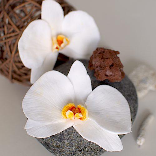 Orchidee aus Zucker